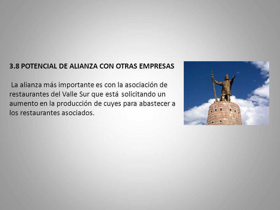 3.8 POTENCIAL DE ALIANZA CON OTRAS EMPRESAS La alianza más importante es con la asociación de restaurantes del Valle Sur que está solicitando un aumen