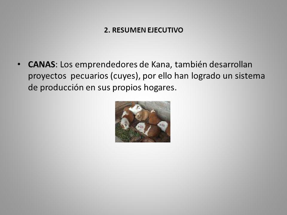 2. RESUMEN EJECUTIVO CANAS: Los emprendedores de Kana, también desarrollan proyectos pecuarios (cuyes), por ello han logrado un sistema de producción