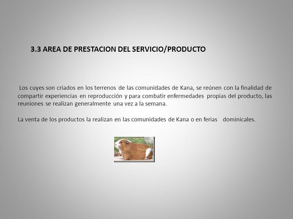 3.3 AREA DE PRESTACION DEL SERVICIO/PRODUCTO Los cuyes son criados en los terrenos de las comunidades de Kana, se reúnen con la finalidad de compartir