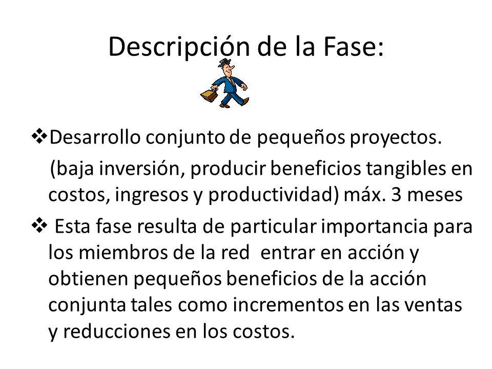 Descripción de la Fase: Desarrollo conjunto de pequeños proyectos. (baja inversión, producir beneficios tangibles en costos, ingresos y productividad)