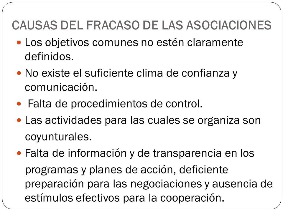 CAUSAS DEL FRACASO DE LAS ASOCIACIONES Los objetivos comunes no estén claramente definidos. No existe el suficiente clima de confianza y comunicación.