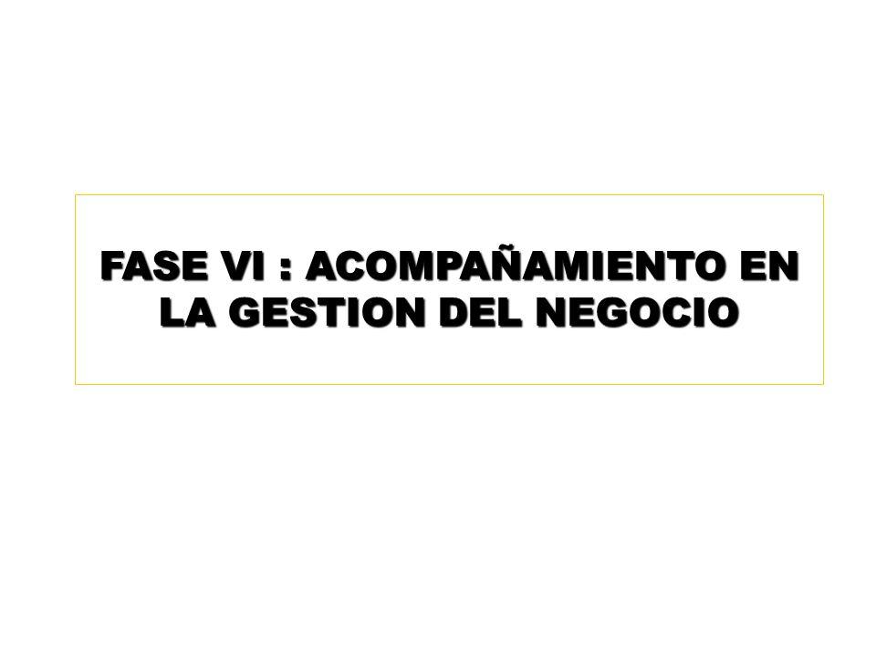 FASE VI : ACOMPAÑAMIENTO EN LA GESTION DEL NEGOCIO