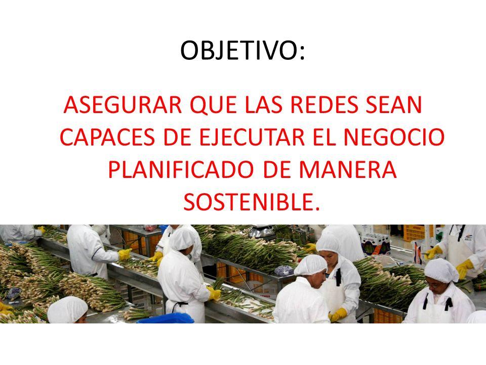 OBJETIVO: ASEGURAR QUE LAS REDES SEAN CAPACES DE EJECUTAR EL NEGOCIO PLANIFICADO DE MANERA SOSTENIBLE.