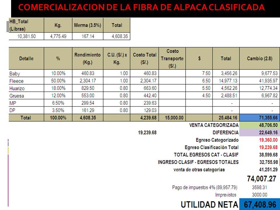 COMERCIALIZACION DE LA FIBRA DE ALPACA CLASIFICADA