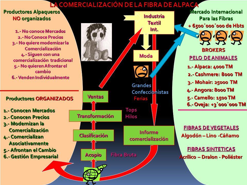 LA COMERCIALIZACIÓN DE LA FIBRA DE ALPACA Mercado Internacional Para las Fibras + 6500´000´000 de Hbts BROKERS PELO DE ANIMALES 1.- Alpaca: 4000 TM 2.