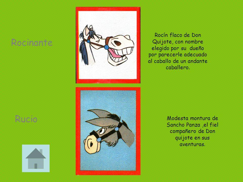 Rocinante Rucio Rocín flaco de Don Quijote, con nombre elegido por su dueño por parecerle adecuado al caballo de un andante caballero. Modesta montura