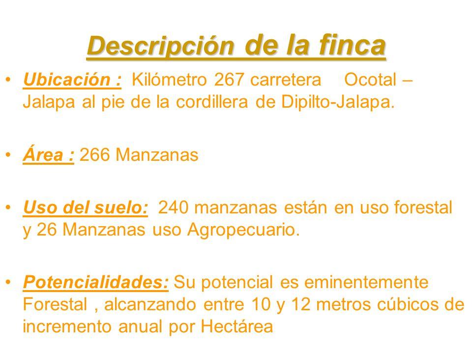Descripción de la finca Ubicación : Kilómetro 267 carretera Ocotal – Jalapa al pie de la cordillera de Dipilto-Jalapa. Área : 266 Manzanas Uso del sue