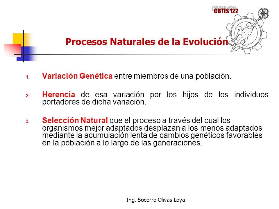 1. Variación Genética entre miembros de una población. 2. Herencia de esa variación por los hijos de los individuos portadores de dicha variación. 3.
