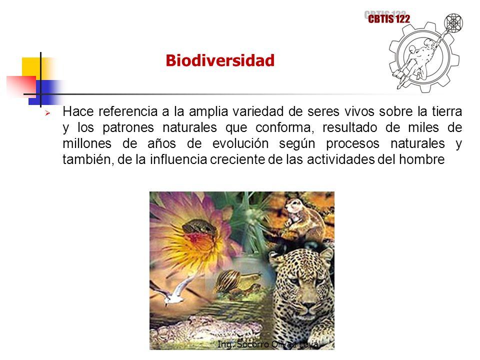 Hace referencia a la amplia variedad de seres vivos sobre la tierra y los patrones naturales que conforma, resultado de miles de millones de años de e