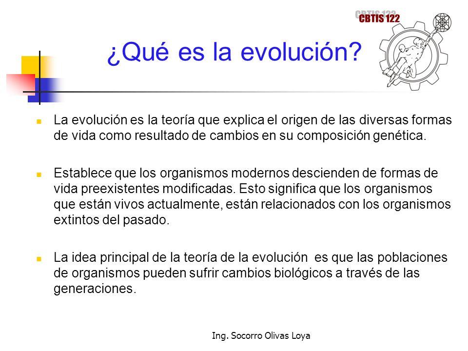 ¿Qué es la evolución? La evolución es la teoría que explica el origen de las diversas formas de vida como resultado de cambios en su composición genét