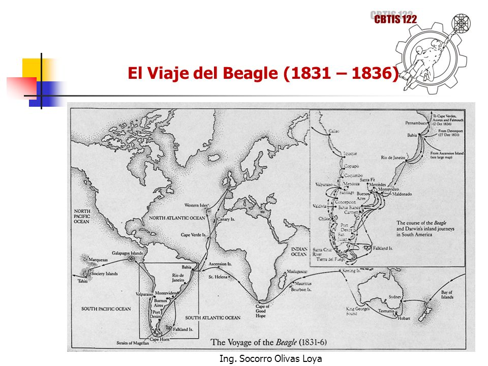 El Viaje del Beagle (1831 – 1836) Ing. Socorro Olivas Loya