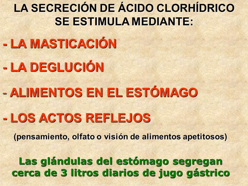 LA SECRECIÓN DE ÁCIDO CLORHÍDRICO SE ESTIMULA MEDIANTE: - LA MASTICACIÓN - LA DEGLUCIÓN - LOS ACTOS REFLEJOS (pensamiento, olfato o visión de alimento