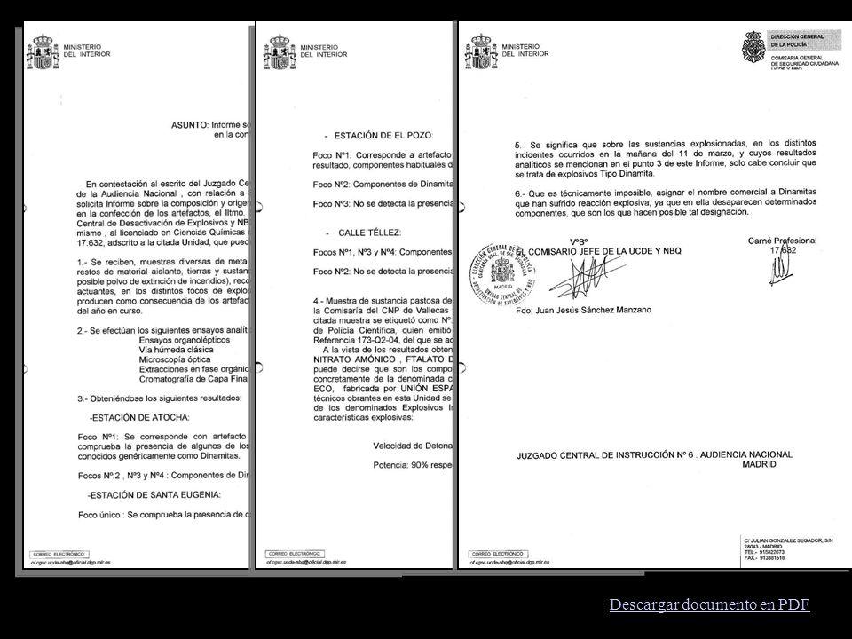 Descargar documento en PDF