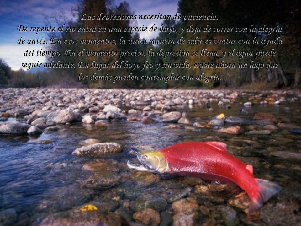 Las depresiones necesitan de paciencia. De repente el río entra en una especie de hoyo, y deja de correr con la alegría de antes. En esos momentos, la