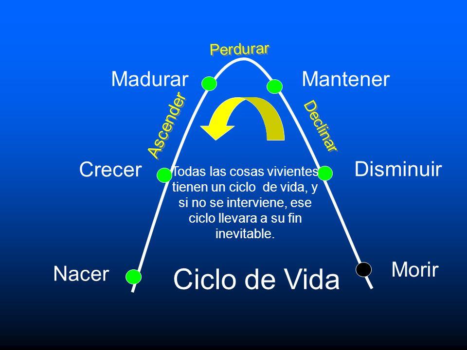 Caracteristicas de una Iglesia Saludable 1.Liderazgo capacitador 2.