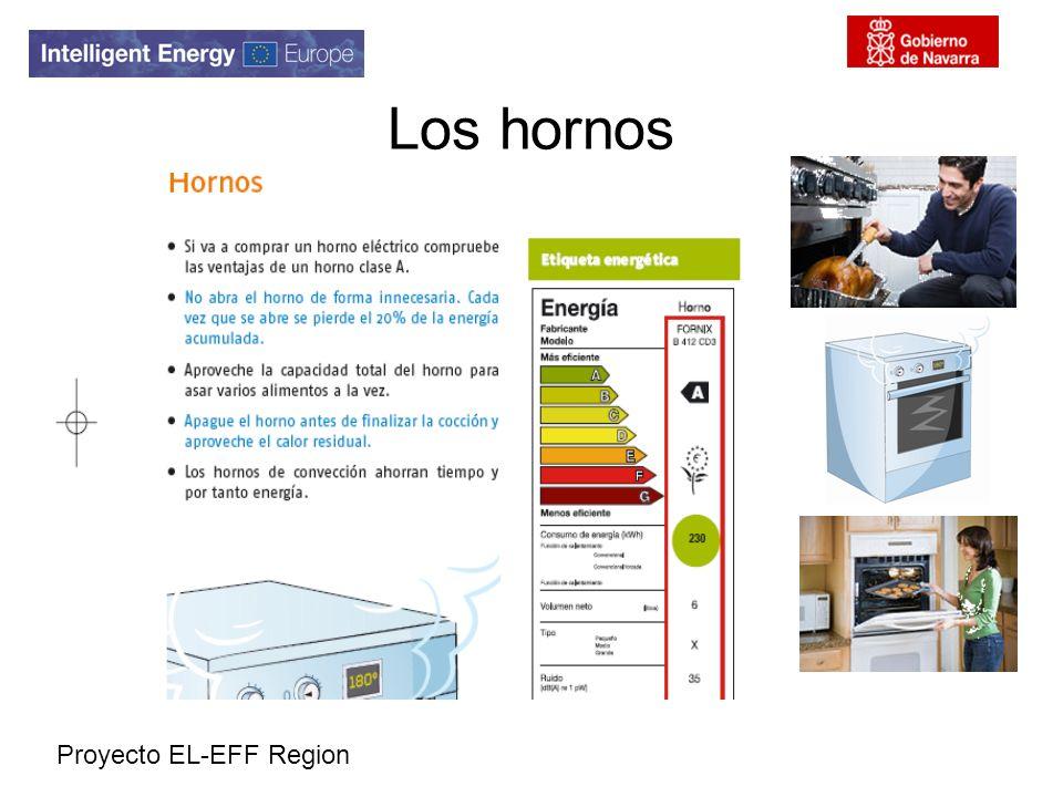 Proyecto EL-EFF Region Los hornos