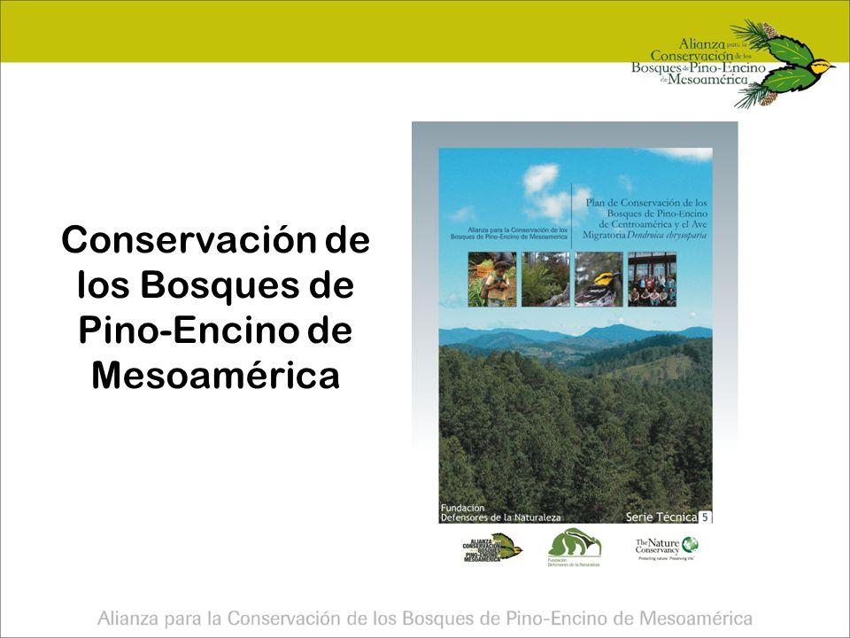 Carta de entendimiento Alianza FDN, TNC Guat SalvaNatura Fundación Educa ALAS Pronatura, IHNE, IMAC, TNC Chis TNC TX, TPWD, Zoo Conservation Outreach Group