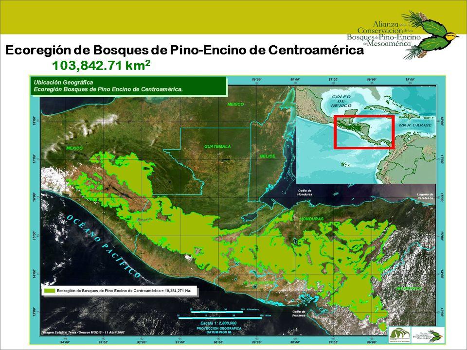 Monitoreo Biológico y Social CategoríaIndicador Contexto Paisajístico % de conectividad./ Índice de fragmentación de los bosques de la Ecoregión Contexto Paisajístico % de hábitat potencial para la especie respecto al original.