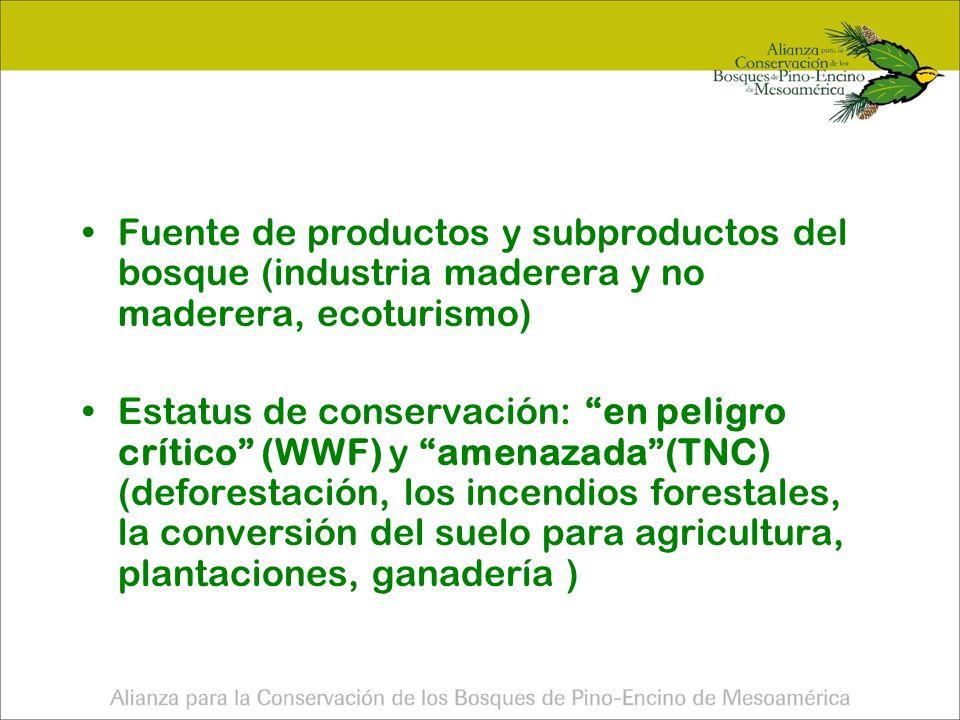 Debilidades Regionales Cobertura actual de 26,728.35 km² (25.7% de la cobertura original) 74.26% ha desaparecido principalmente por la agricultura anual de maíz y frijol.