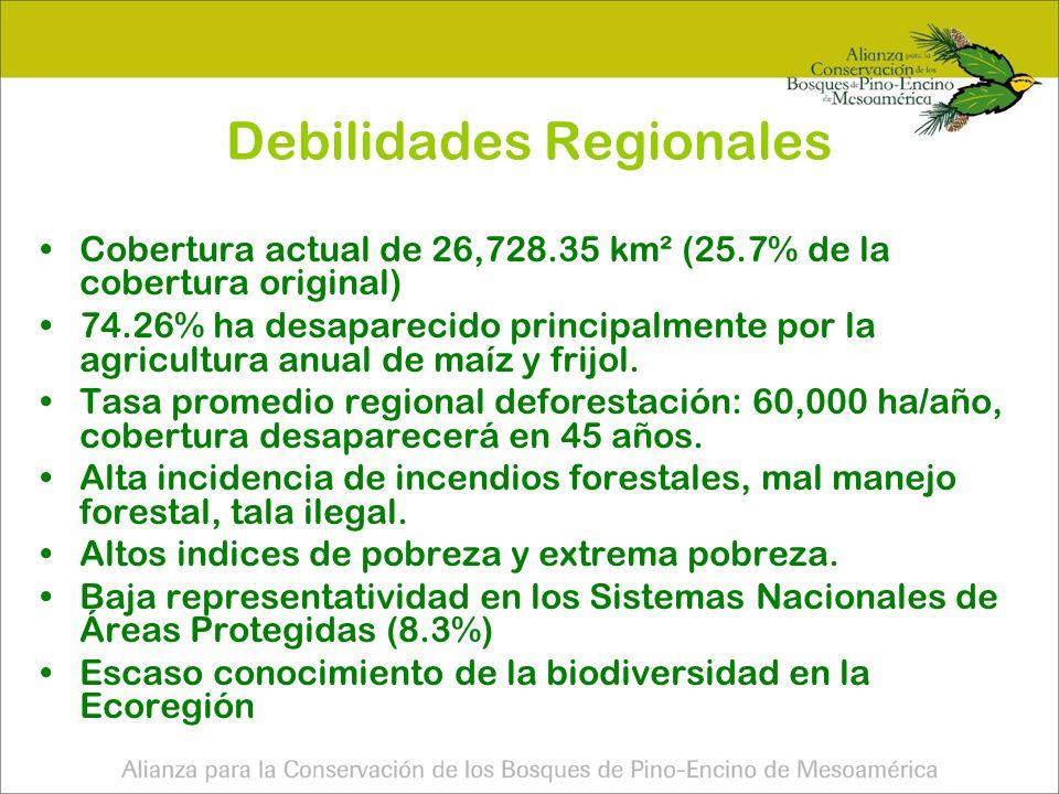 Pa í sN ú mero de sitios Superficie (ha) Promedio de superf icie por sitio (has) Guatemala103355,861.513,455 Honduras116486,262.364,192 M é xico 68303,424.264,462 Nicaragua1577,473.475,165 Salvador616,969.702,828