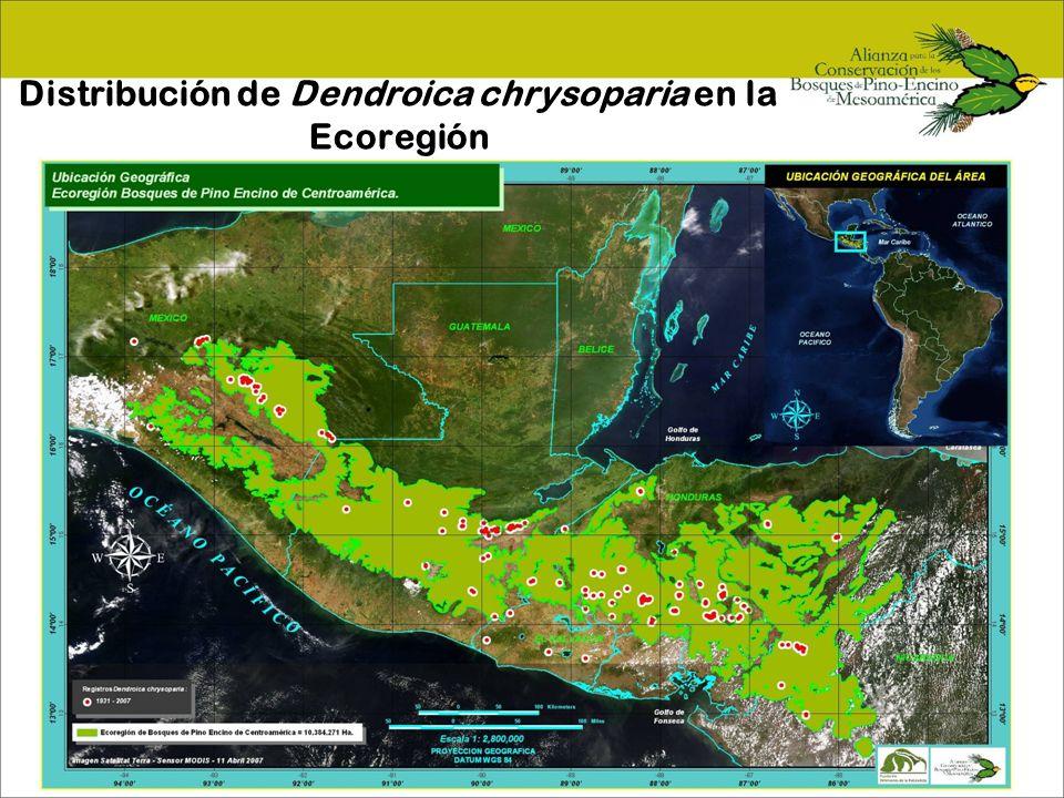 Priorización de áreas-Chiapas