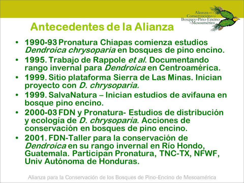 Antecedentes de la Alianza 2001.Taller de Río Hondo.