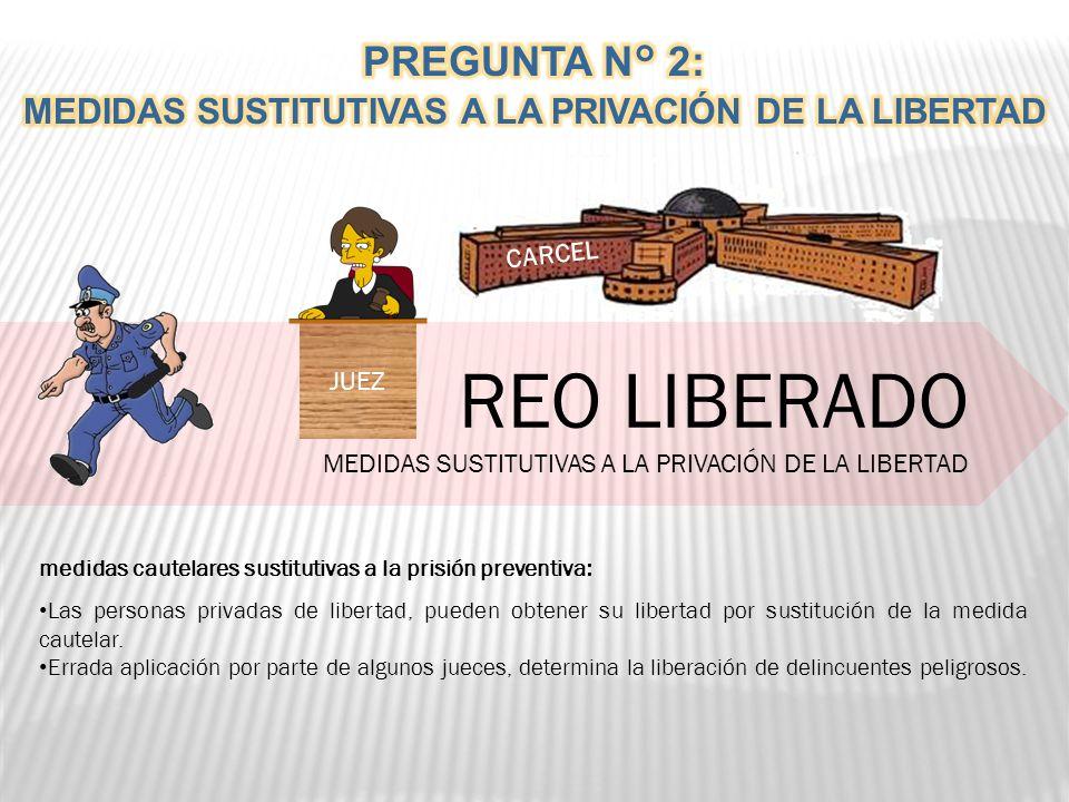 REO LIBERADO MEDIDAS SUSTITUTIVAS A LA PRIVACIÓN DE LA LIBERTAD JUEZ.