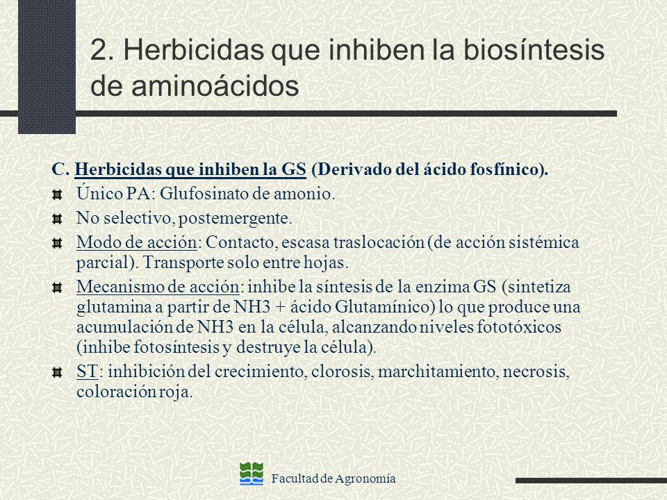 Facultad de Agronomía 2. Herbicidas que inhiben la biosíntesis de aminoácidos C. Herbicidas que inhiben la GS (Derivado del ácido fosfínico). Único PA