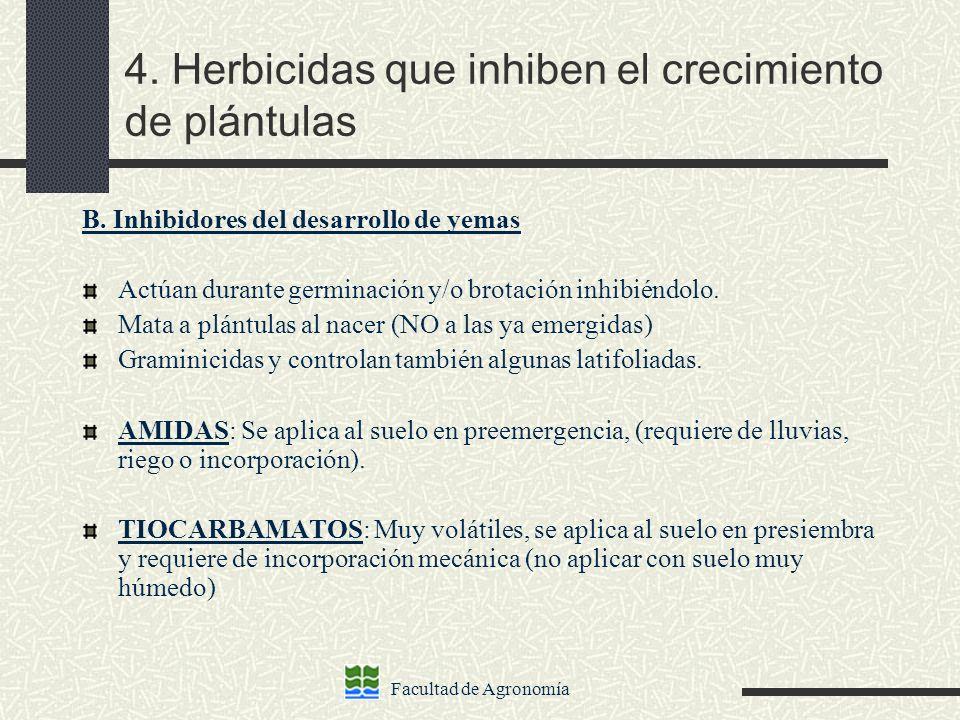 Facultad de Agronomía 4. Herbicidas que inhiben el crecimiento de plántulas B. Inhibidores del desarrollo de yemas Actúan durante germinación y/o brot