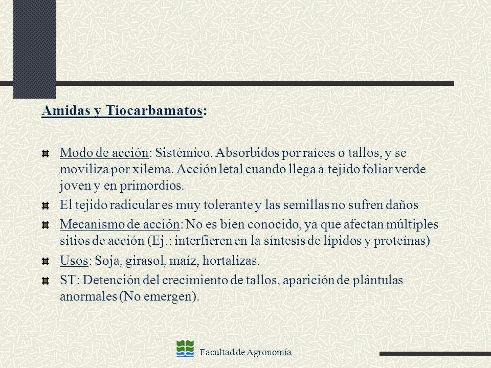 Facultad de Agronomía Amidas y Tiocarbamatos: Modo de acción: Sistémico. Absorbidos por raíces o tallos, y se moviliza por xilema. Acción letal cuando