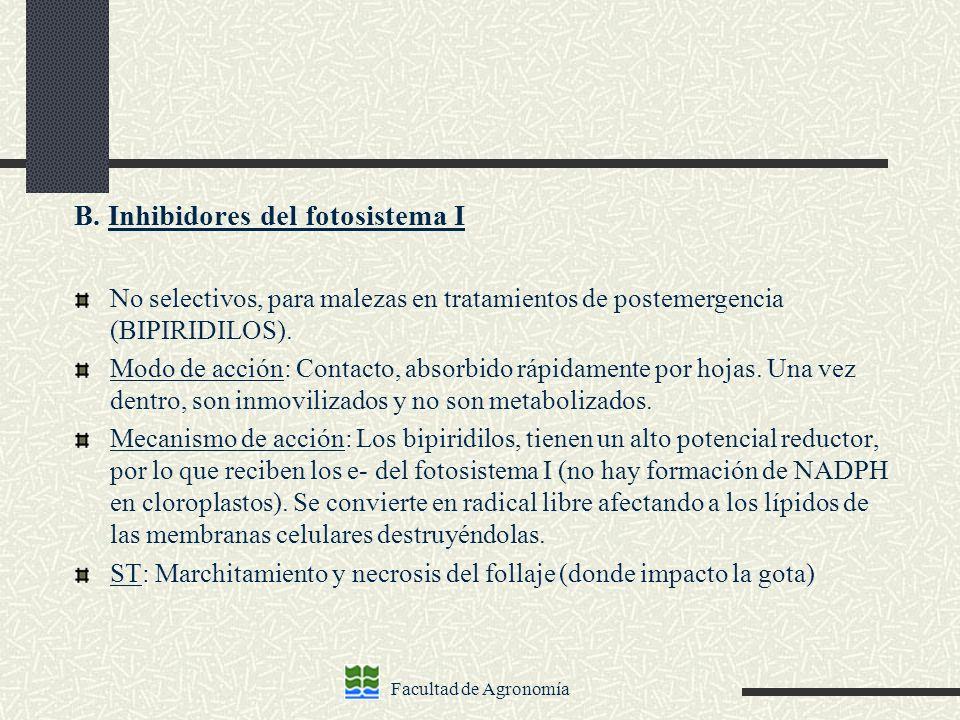 Facultad de Agronomía B. Inhibidores del fotosistema I No selectivos, para malezas en tratamientos de postemergencia (BIPIRIDILOS). Modo de acción: Co