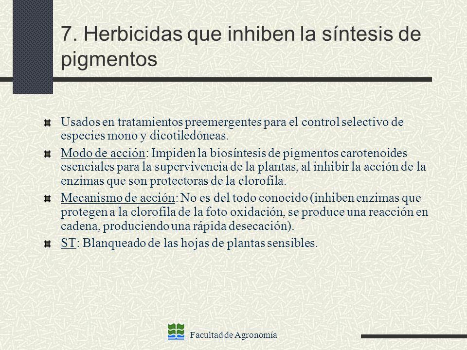Facultad de Agronomía 7. Herbicidas que inhiben la síntesis de pigmentos Usados en tratamientos preemergentes para el control selectivo de especies mo
