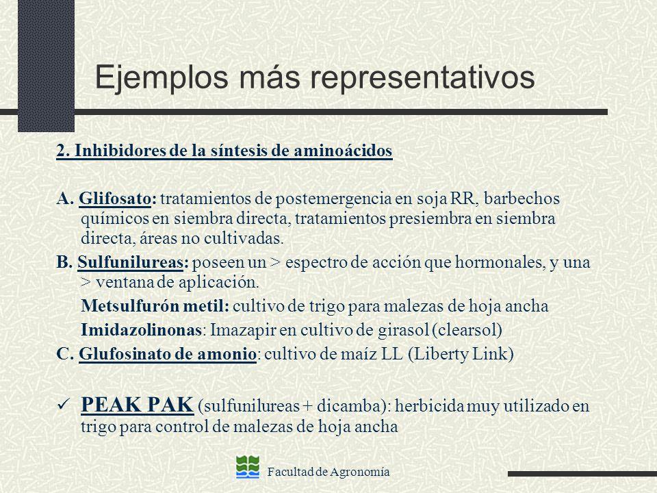 Facultad de Agronomía Ejemplos más representativos 2. Inhibidores de la síntesis de aminoácidos A. Glifosato: tratamientos de postemergencia en soja R