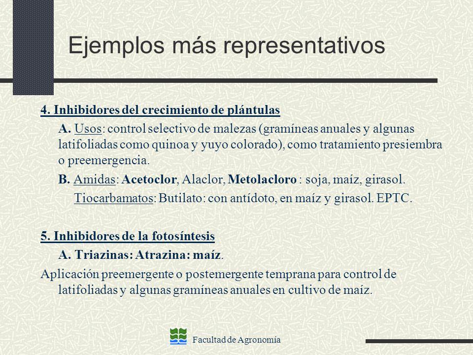 Facultad de Agronomía Ejemplos más representativos 4. Inhibidores del crecimiento de plántulas A. Usos: control selectivo de malezas (gramíneas anuale