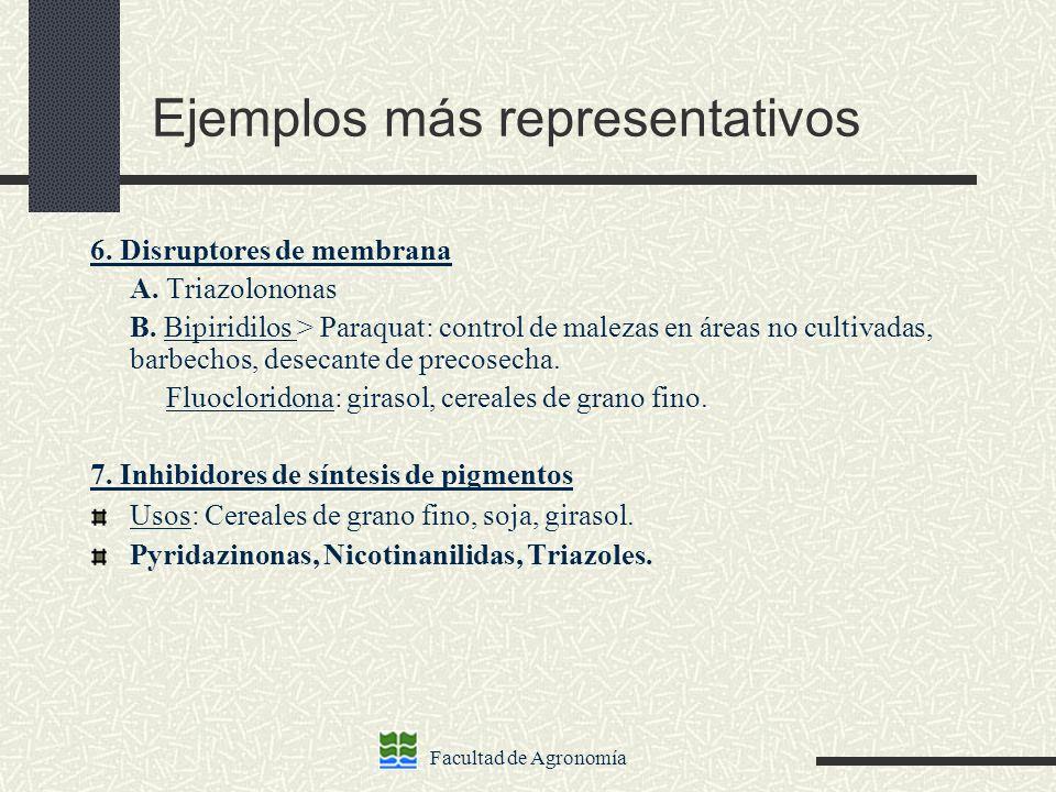 Facultad de Agronomía Ejemplos más representativos 6. Disruptores de membrana A. Triazolononas B. Bipiridilos > Paraquat: control de malezas en áreas