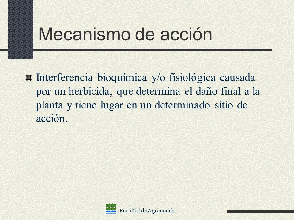 Facultad de Agronomía Mecanismo de acción Interferencia bioquímica y/o fisiológica causada por un herbicida, que determina el daño final a la planta y