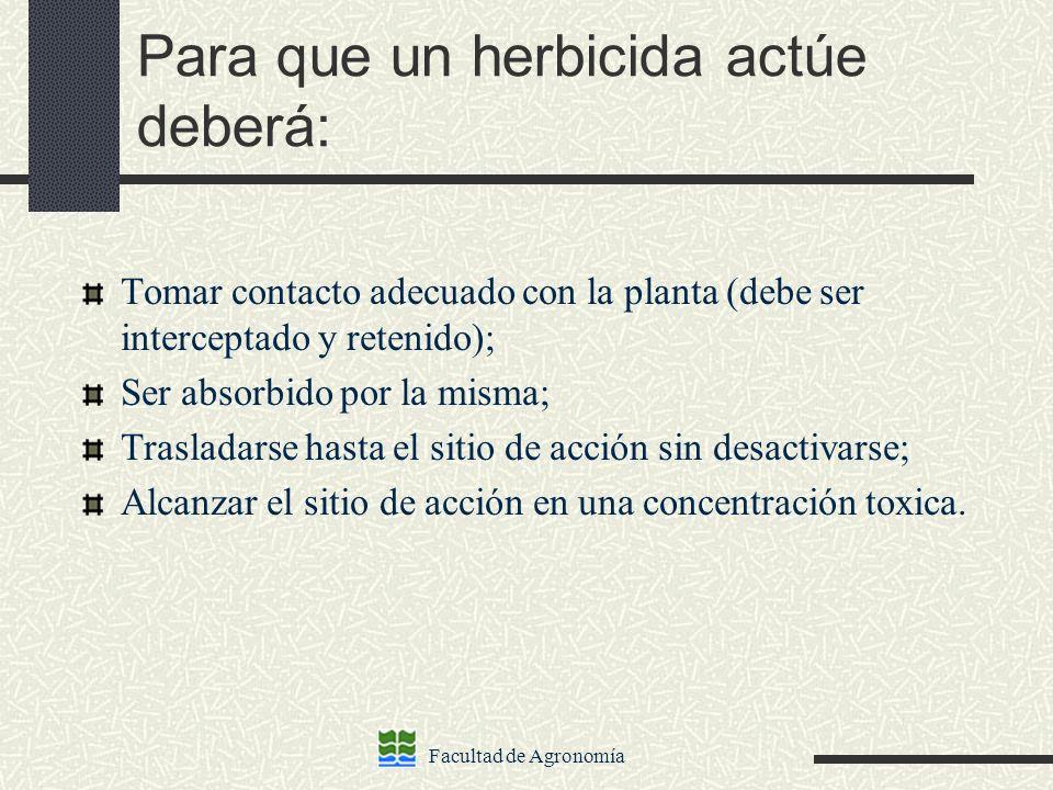 Facultad de Agronomía Para que un herbicida actúe deberá: Tomar contacto adecuado con la planta (debe ser interceptado y retenido); Ser absorbido por