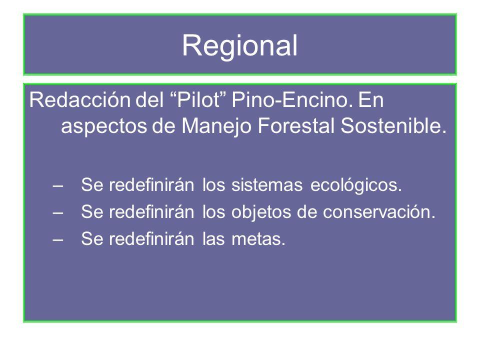 Regional Redacción del Pilot Pino-Encino. En aspectos de Manejo Forestal Sostenible.