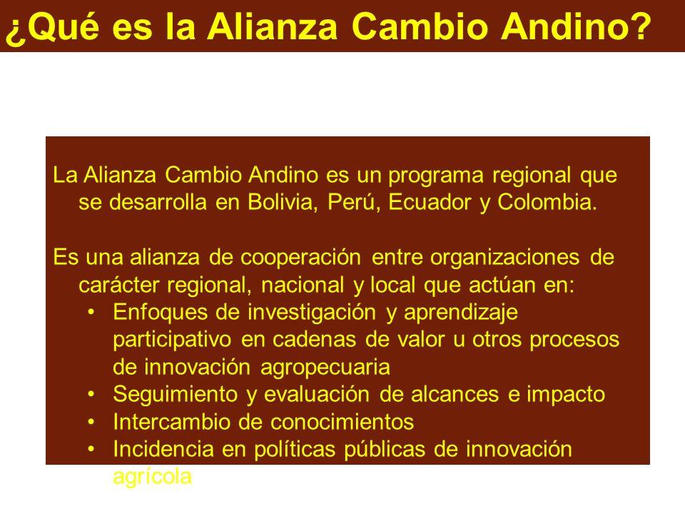 ¿Qué es la Alianza Cambio Andino.