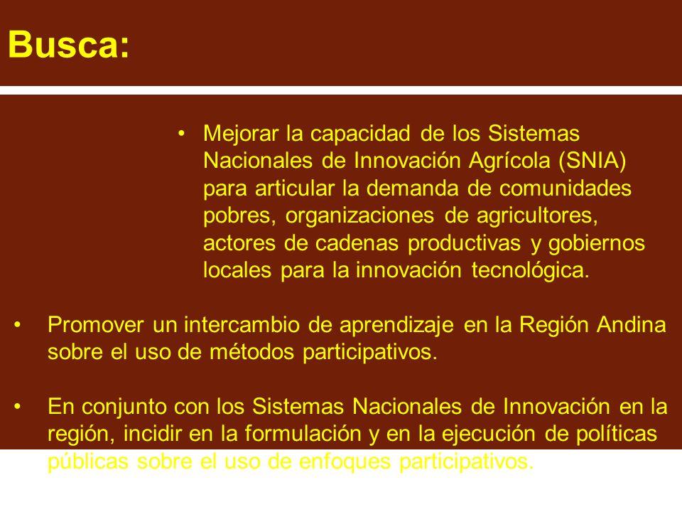 Busca: Mejorar la capacidad de los Sistemas Nacionales de Innovación Agrícola (SNIA) para articular la demanda de comunidades pobres, organizaciones de agricultores, actores de cadenas productivas y gobiernos locales para la innovación tecnológica.