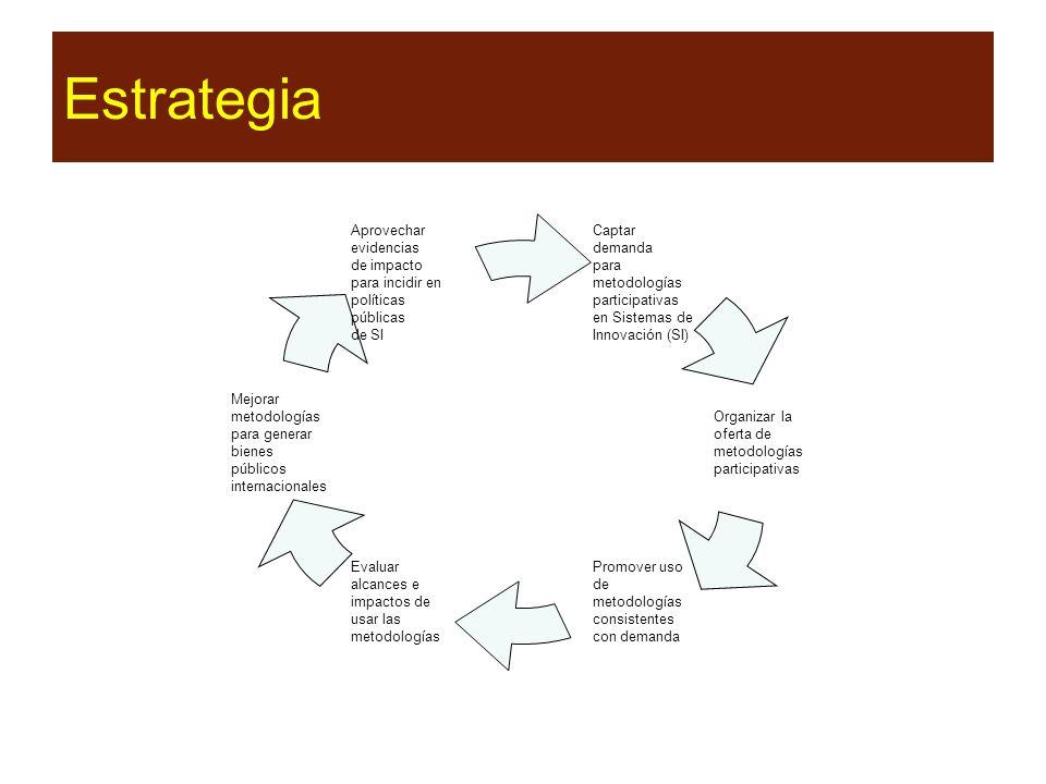 Estrategia Captar demanda para metodologías participativas en Sistemas de Innovación (SI) Organizar la oferta de metodologías participativas Promover uso de metodologías consistentes con demanda Evaluar alcances e impactos de usar las metodologías Mejorar metodologías para generar bienes públicos internacionales Aprovechar evidencias de impacto para incidir en políticas públicas de SI