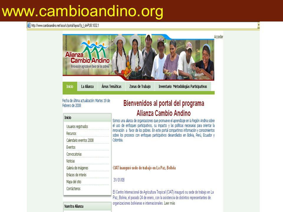 www.cambioandino.org