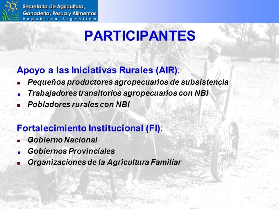 PARTICIPANTES Apoyo a las Iniciativas Rurales (AIR): Pequeños productores agropecuarios de subsistencia Trabajadores transitorios agropecuarios con NBI Pobladores rurales con NBI Fortalecimiento Institucional (FI): Gobierno Nacional Gobiernos Provinciales Organizaciones de la Agricultura Familiar