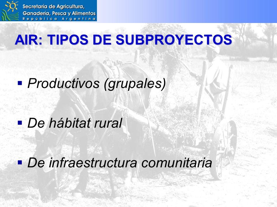 AIR: TIPOS DE SUBPROYECTOS Productivos (grupales) De hábitat rural De infraestructura comunitaria