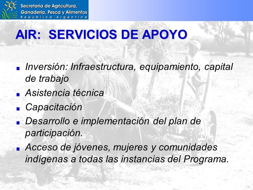 AIR: SERVICIOS DE APOYO Inversión: Infraestructura, equipamiento, capital de trabajo Asistencia técnica Capacitación Desarrollo e implementación del plan de participación.