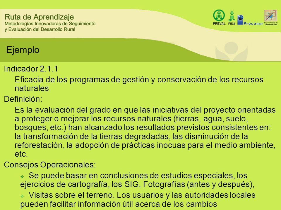 Ejemplo Indicador 2.1.1 Eficacia de los programas de gestión y conservación de los recursos naturales Definición: Es la evaluación del grado en que la