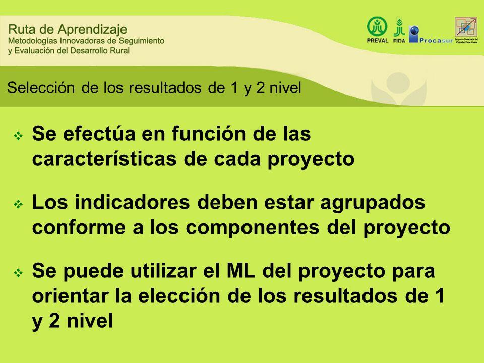 Selección de los resultados de 1 y 2 nivel Se efectúa en función de las características de cada proyecto Los indicadores deben estar agrupados conform