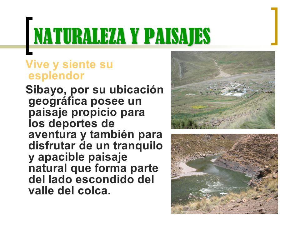 NATURALEZA Y PAISAJES Vive y siente su esplendor Sibayo, por su ubicación geográfica posee un paisaje propicio para los deportes de aventura y también