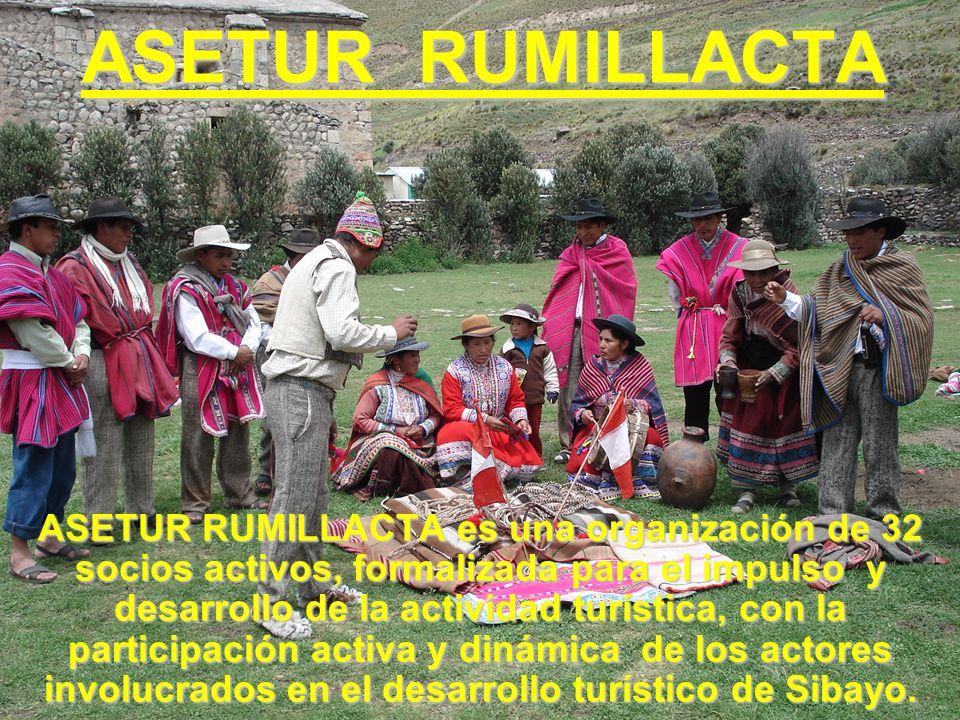 ASETUR RUMILLACTA ASETUR RUMILLACTA es una organización de 32 socios activos, formalizada para el impulso y desarrollo de la actividad turística, con