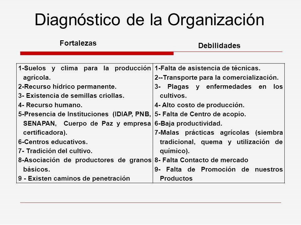 Diagnóstico de la Organización 1-Suelos y clima para la producción agrícola. 2-Recurso hídrico permanente. 3- Existencia de semillas criollas. 4- Recu